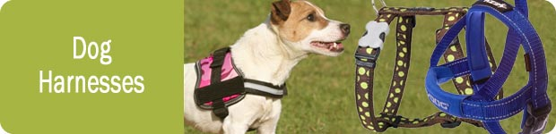 Dog Harnesses UK