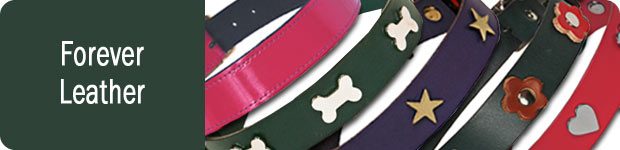 Leather Dog Collars Leads