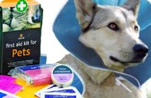 Dog Care Products