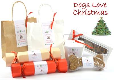 Οι σκύλοι αγαπούν τα Χριστούγεννα!