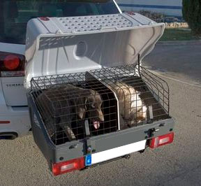 Ban Towbar Dog Carriers Info Amp Petition