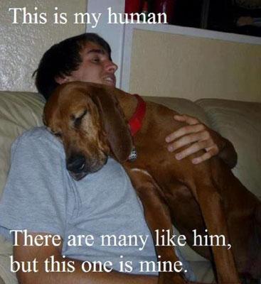 Inspirational Dog Pics Man S Best Friend