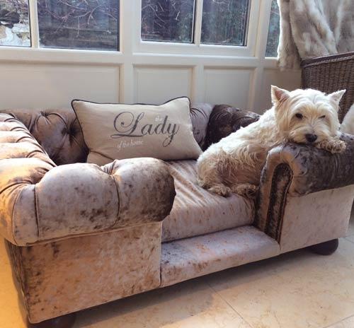 Balmoral Truffle Crushed Velvet Luxury Dog Sofa Bed