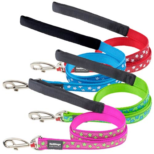 Buy Nylon Dog Lead With Dazzling Stars Design Uk