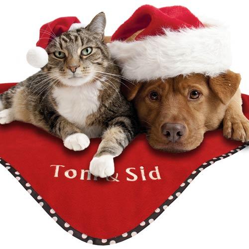 Dog Toys Christmas Dog Toys Gifts Dog Clothing Dog | Dog Breeds ...