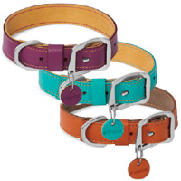 Frisco Leather Dog Collar