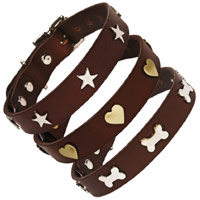 Studded Brown Leather Dog Collars