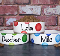 Personalised Dog Bowls - Dotty Straight