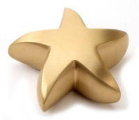Keepsake Urn Brass Star