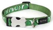 Red Dingo Dog Collar Circadelic Green