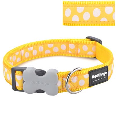 Dog Collar White Spots on Yellow