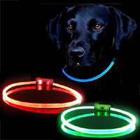 light up LED dog collars and leads