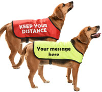 dog message coat