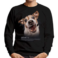 Dog Father's Day gift sweater