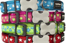 Nylon Dog Collars & Leads