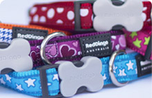 Patterned Dog Collars