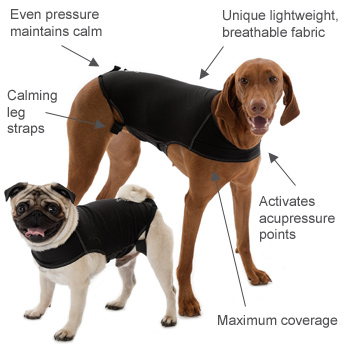 dog anxiety vest by Company of Animals