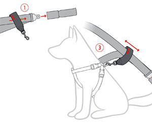dog car seat belt fitting