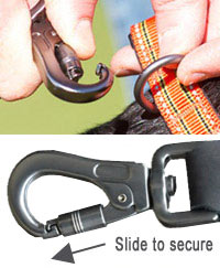short dog lead with secure clip
