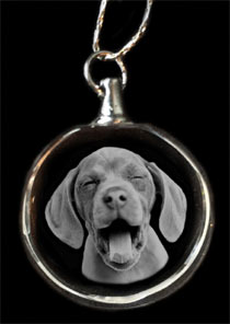 dog photo crystal necklace