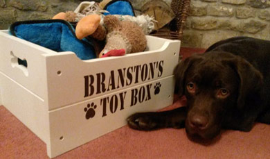 wooden dog toy box personalised
