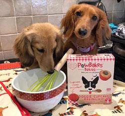 dog cupcakes baking kit