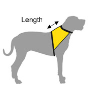 dog vest - where to measure