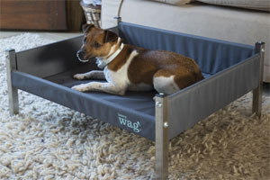 Elevated raised dog bed with sides by Henry Wag