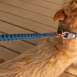 Zero Shock LITE shock absorbing dog lead for small dogs