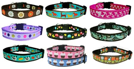 fashion dog collars and leads