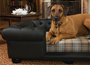 Balmoral Black Leather Dog Bed | Real or Faux Leather