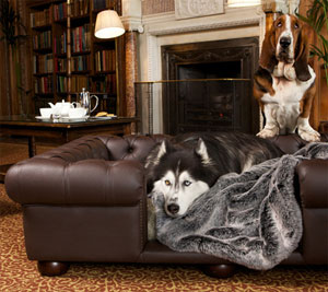 Charmant Faux Chocolate Brown Leather Dog Sofa Bed