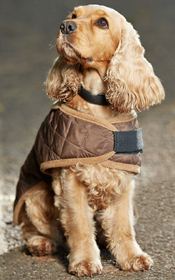Gor Pet water resistant quilted dog coat with fleece lining
