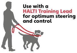 Halti dog training stop pull headcollar and lead