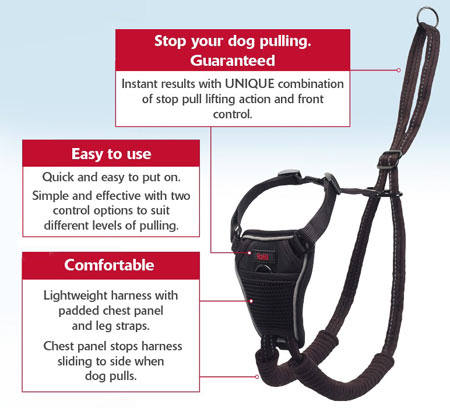 Halti stop dog pulling harness features