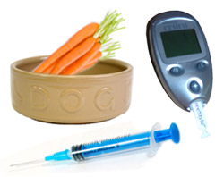 Controlling diabetes in dogs
