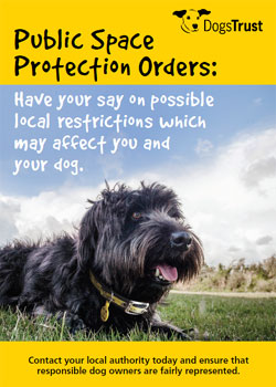 New Dog Walking Legislation - have your say