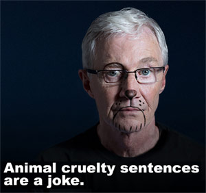 Animal cruelty sentences are a joke
