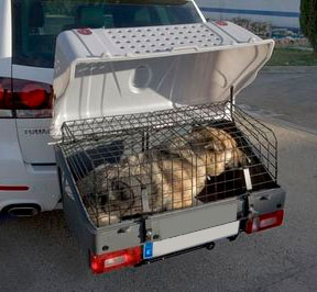 Ban towbar dog carriers