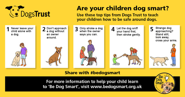 Be Dog Smart infographic