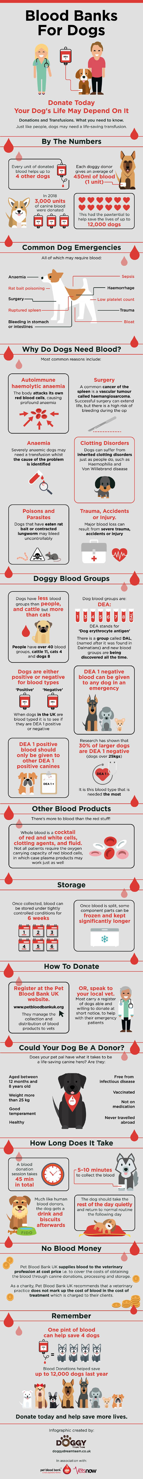 Dog Blood Banks infographic