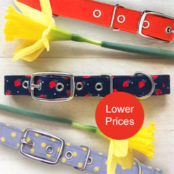 price reductions on designer dog collars
