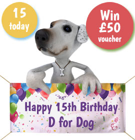 D for Dog birthday competition