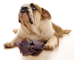 dogs ill after eating jerky treats