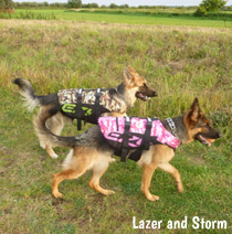 Life jacket for dogs going boating