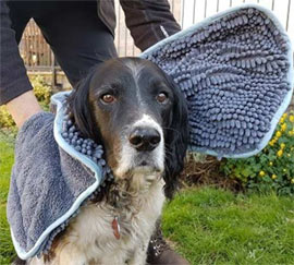 Henry Wag Microfibre Noodle Glove Dog Towel