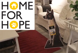 IKEA Home for Hope