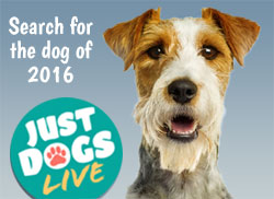 Just Dogs Live face of 2016