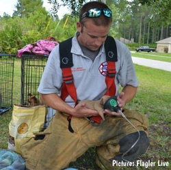 firefighter giving oxygen to a puppy