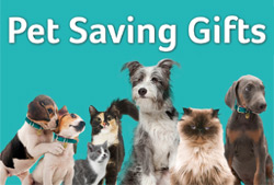 PDSA Pet Saving Gifts